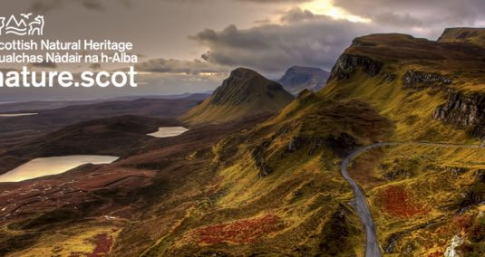 Rolling Scottish hillside